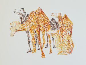 Camelos - Design por Hicham Chajai com caligrafia árabe