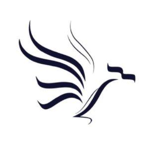 NorSK - Logo Design de Hicham Chajai